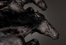Horse (At)