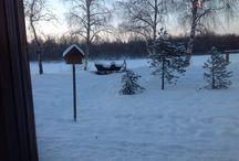 Voyage ivalo Laponie finlande / Vacançes ivalo Laponie finlandaise janvier 2015