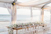 + WEDDINGS