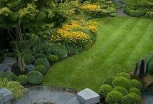 Jó kertek
