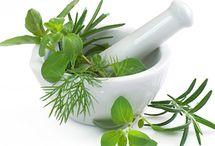 Learn: Holistic Health / Herbalists. Aromatherapy. Natural Medicine.  / by Alisha Galbraith