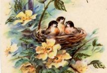 Vintage - Tavasz / Régi képeslapok