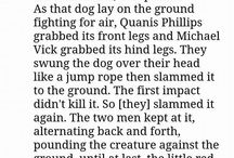 michael vicks cruelty