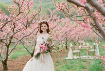 Spring Wedding Inspiration / Spring Wedding Inspiration Spring Wedding Ideas Spring Wedding Decor Spring Wedding Ceremony Spring Wedding Reception Spring Wedding Theme by Sail and Swan