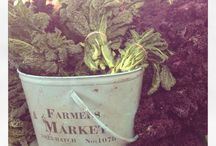 Farmers Market Heaven / I love visiting Farmers markets, where ever in the world I am.  Here's my snaps
