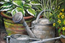 Watering Cans / by Barbara Smith