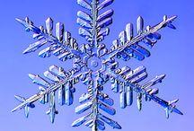 Snow / by Diane Sharp