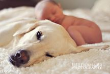 allisons baby / by Madelyn Witruk