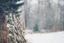 §  Winter  §
