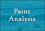 Paint Analysis/ Historic