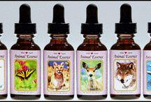 Animal Natural Medicine / Everything around Natural Medicines for Animals