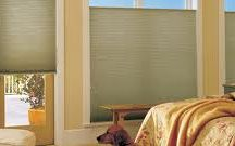 Beautiful shades for your home!