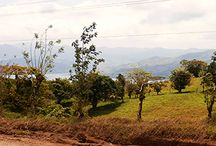 Lake Arenal Real Estate / ArenalGuru - the leading Lake Arenal real estate source with over 150 properties and homes for sale and rent lake-wide.