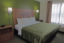 """""""Guest Room"""" / Showcase features of our select service hotel."""