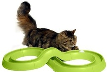 Cat Toys / Toys for the discerning cat. Toys to keep your cats entertained and happy.
