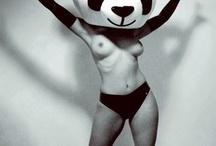 Pandas in Disguise