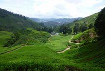 Malaysia / Bilder von meiner #Malaysia #Reise. Pictures from my journey in Malaysia.