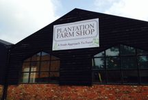 Farm Shop / We want to provide our customers and the local community with unique, delicious and healthy food that is well sourced and well presented. It will synchronize with our existing businesses and Farm to embrace a soil-to-plate philosophy that is at the heart of our ethos.