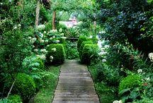 Trädgårdsgångar