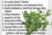 Liečivé bylinky v kuchyni