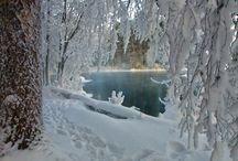fondo nevado