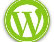 Custom WordPress Web Development Company India / Sparx IT Solutions is a custom WordPress web development company from India. It also offers WordPress web development services with 100% satisfaction guarantee in all over the world.