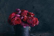 Bloemen en planten / Bloemen en planten met ook veel tips voor buffetten en decoratie op tafel in de horeca