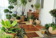garden indor