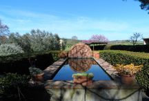 Agriturismo Piana Arborello immagini dal giardino