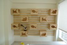 Pet Spaces & Places / Because why shouldn't your pets area be stylish too?