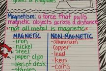 5- Science anchor chart