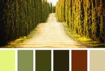 color chip