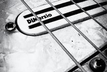 DiMarzio / Pickups larry dimarzio