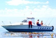 abu dhabi deep sea fishing