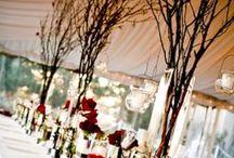 Dream Wedding Ideas / by Eryn S.