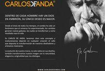 Biografía Carlos de Anda