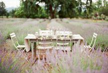 Inspiration Provence