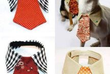 Dog clothes / DIY