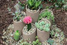 Garden, pathways, pots etc