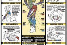 exercise streches