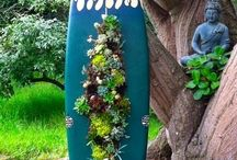 Upcycled Gardens