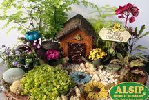 Miniature Gardening / Miniature Gardening