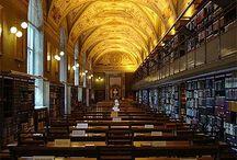 La perle d'ambre - L'Académie d'Arki