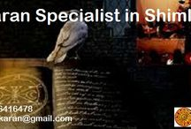 Vashikaran Specialist in Shimla / Now you can get the solution of all Your problems and get back happiness in your life. You can call our Vashikaran Specialist in Shimla Pandit Kanahiya Lal Ji and get rid from your all problems.