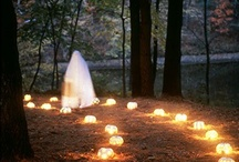 Halloween / by Elizabeth Chaney