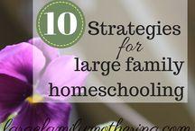 organizacja - edukacja domowa