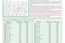 PA Hunting Digest / Rules & regulations for bowhunting in Pennsylvania