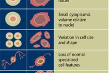 Cytotechnology/Pathology / My future career  / by Kadley Harmon