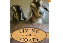 Get My Goat -  / by Melanie Arnold