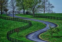 Kentucky / by Karen Clark Greathouse